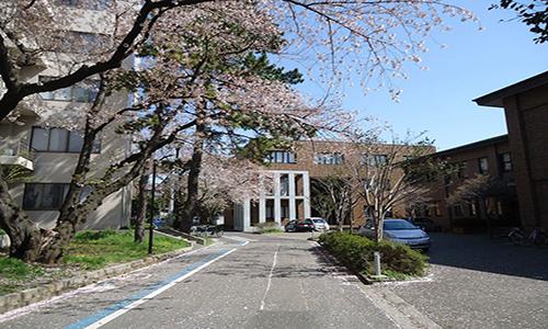 名校说|日本千叶大学怎么样?