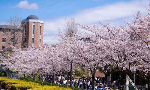 艺术生去日本艺术留学条件
