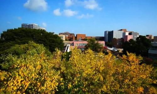 日本筑波大学怎么样?