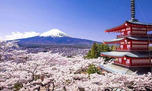 日本艺术留学怎么样?