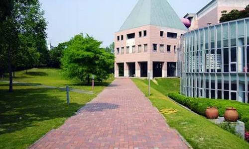 日本大学艺术类留学有哪些?