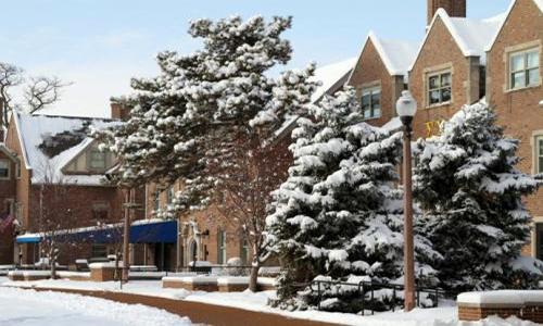 艺术留学|美国圣路易斯华盛顿大学研究生专业有哪些?