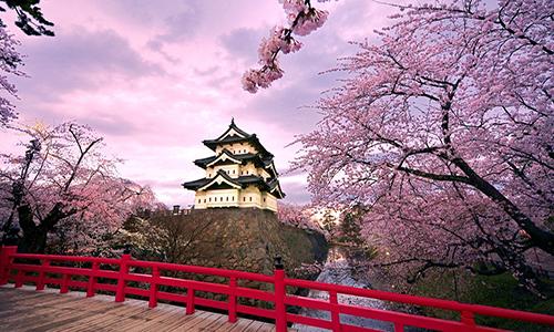 专业盘点|日本艺术留学热门专♀业有哪些?