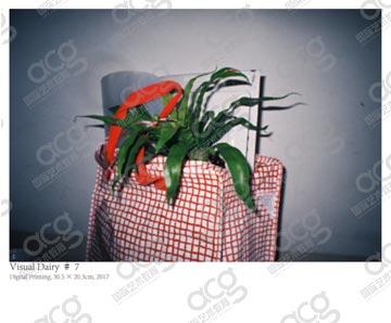 杨旸-广州校区-纽约视觉艺术学院SVA-摄影专业-硕士