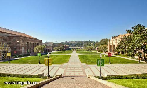 加州大学洛杉矶分校如何申请?