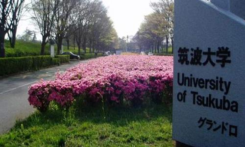 日本艺术留学筑波大学专业设置