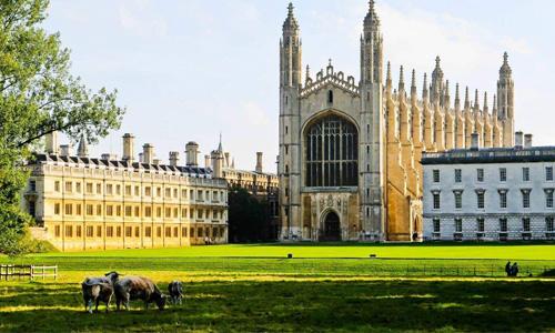 伦敦大学学院需要什么条件?