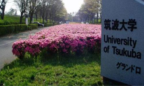 日本筑波大学纯艺术专业留学院校